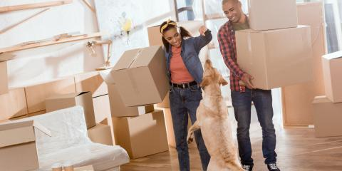 3 Tips for Moving With Pets, Lexington-Fayette Northeast, Kentucky
