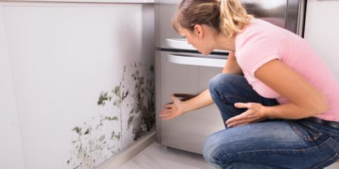 How to Prevent Mold if You Live Near Water, La Crosse, Wisconsin