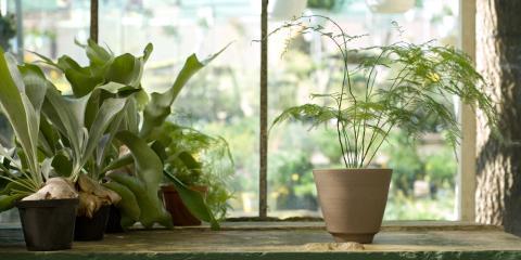 An HVAC Service Shares 3 Ways to Improve Your Indoor Air Quality, 29, Nebraska