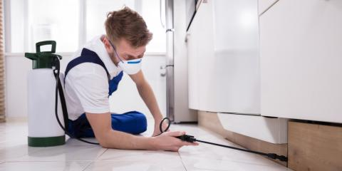 3 Important Reasons to Hire a Professional for Rodent Removal, Newport, Ohio