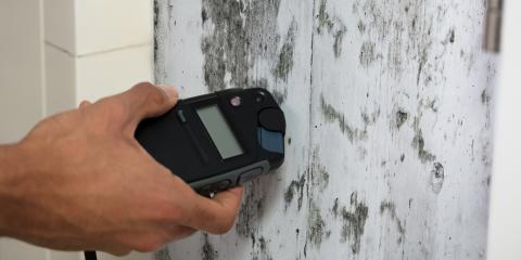 Guide to Mold Inspection, Gulf Shores, Alabama