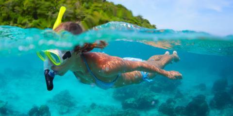 Going Snorkeling? 3 Interesting Facts About Hawaiian Green Sea Turtles , Waianae, Hawaii