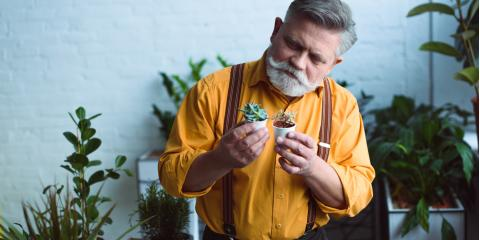 A Guide to Father's Day Flower Arrangements, Manhattan, New York