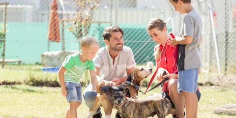 5 Benefits of Adopting a Pet From a Shelter, Koolaupoko, Hawaii