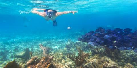 Snorkeling Safety Do's & Don'ts, Waianae, Hawaii