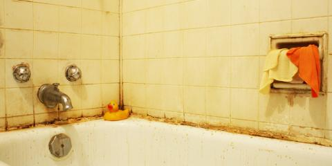 3 Signs It's Time to Call a Mold Removal Specialist, Eagle, Ohio