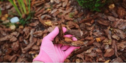 5 Ways to Prepare Your Yard for the Winter, Crescent, Wisconsin