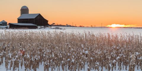How Farm Fuel Additives Help You in Winter , Palmyra, New York