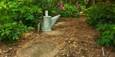 Allan Tree Services Guide to Mulch, Wood River, Illinois