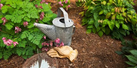 Which Mulch Is Best—Stone, Compost, or Shredded Hardwood?, Imperial, Missouri