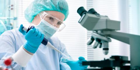 Why Are Blood Tests Important?, Olean, New York
