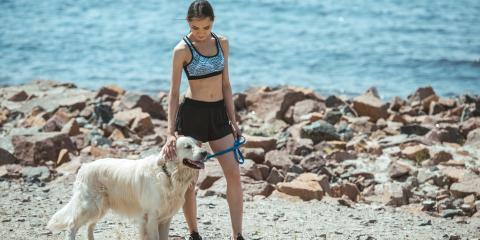 4 Veterinarian-Approved Dog-Walking Tips, Wahiawa, Hawaii
