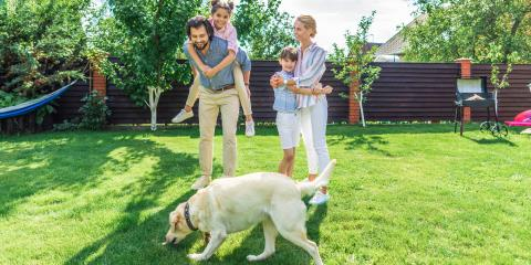 4 Tips for Dog-Proofing Your Fence, Anchorage, Alaska