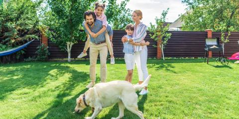 3 Factors to Consider When You Buy a House With a Big Yard, Lakewood, Colorado