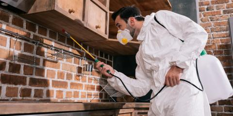 3 Questions to Ask Your Exterminator, Enterprise, Alabama