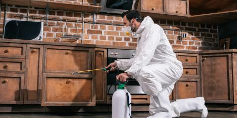 4 Fall Pest Control Tips, North Hobbs, New Mexico