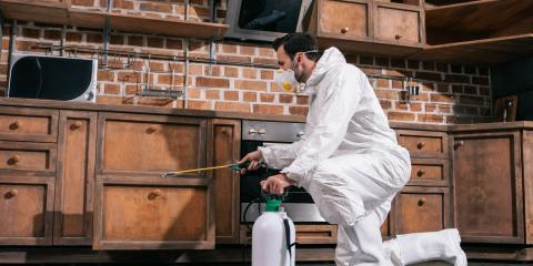 4 FAQ About Residential Pest Control, Staunton, Illinois