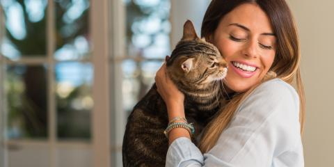 3 Home Cleaning Tips When You Have a Cat, Anchorage, Alaska
