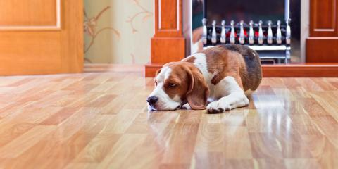 3 Tips for Keeping Your Wood Flooring Scratch-Free, Wawayanda, New York
