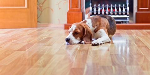 3 Factors to Consider About Vinyl & Laminate Flooring, Forest Lake, Minnesota