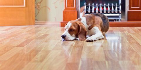 What is Hardwood Floor Screening?, Providence, Rhode Island