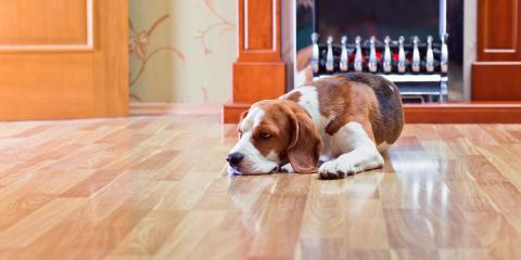 5 Benefits of Hardwood Floors, Holmen, Wisconsin