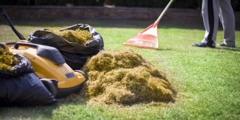 3 Common Causes of Yellow Lawns, New Market, North Carolina