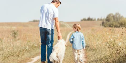 Skills to Teach Your Dog for Their Own Well-Being, San Marcos, Texas
