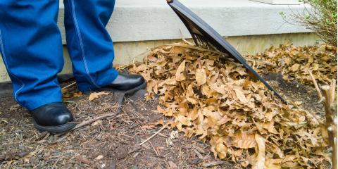 Should You Bag or Mulch Your Leaves?, Saltillo, Nebraska