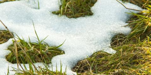3 Lawn Maintenance Strategies to Try This Winter, Columbus, North Carolina
