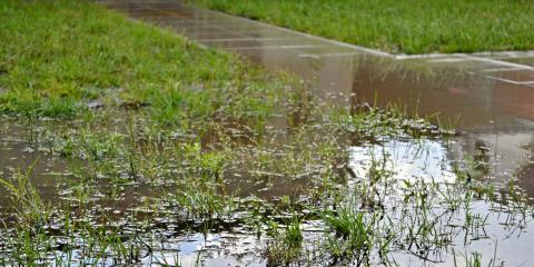 3 Signs Your Yard Needs Help Getting Rid of Water, Ewa, Hawaii