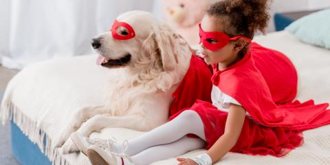 4 Halloween Safety Tips for Pet Owners, Elkton, Maryland
