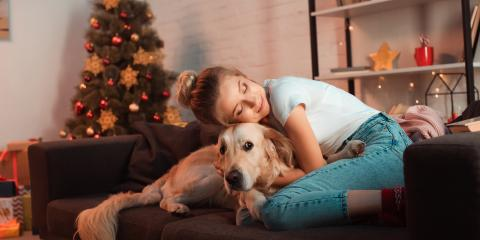 Why Board Your Dogs During the Holiday Season?, Keaau, Hawaii