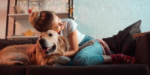 Are Dogs Susceptible to the Coronavirus?, Versailles, Kentucky