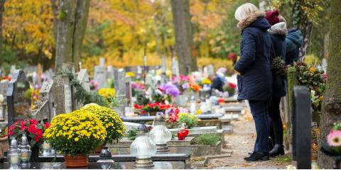 A Helpful Guide to Bringing Children to a Cemetery, Le Roy, New York