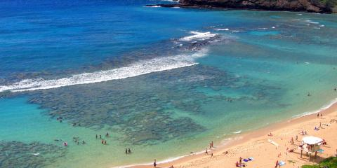 Loved Ones Coming to Visit? Why You Should Take Them on an Island Tour, Waikane, Hawaii