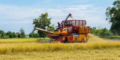 What Is Crop Insurance?, Dumas, Texas