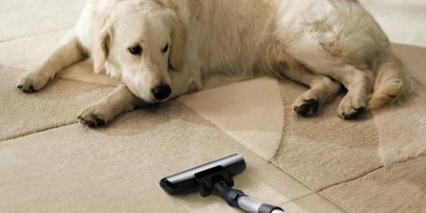 Why Ellicott City Vacuum Cleaner Service Recommends Weekly Cleanings, Ellicott City, Maryland