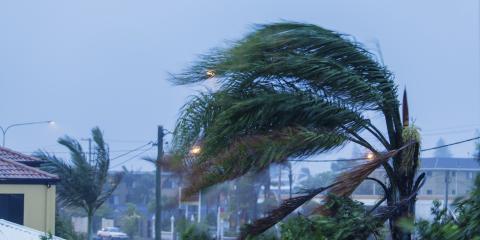 3 Benefits of Hurricane Overhead Doors, Ewa, Hawaii
