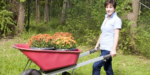 A Guide to Refreshing Your Garden With Fall Plants, Plymouth, Minnesota