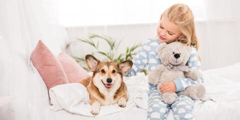 3 Ways to Help Children Cope With the Loss of a Pet, Koolaupoko, Hawaii