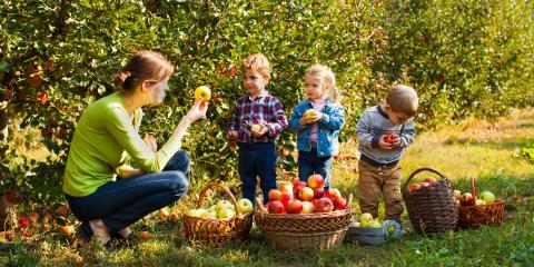 Nutrition Tips for a Preschooler , Queens, New York