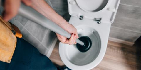 6 Things You Should Never Flush Down a Toilet, Albany, Oregon