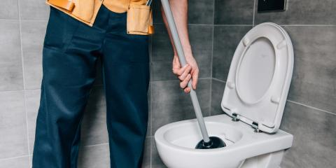 4 Items You Should Not Flush Down the Toilet, Edgewood, Kentucky