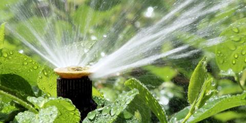 4 Ways Landscaping Irrigation Benefits Busy Parents, Whitefish, Montana