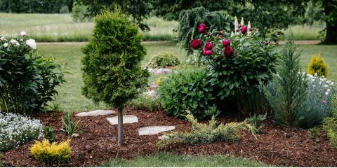 What You Need to Know About Mulch, Altadena, California