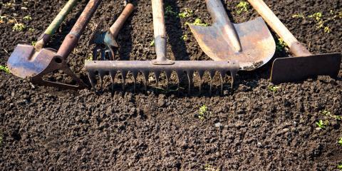 5 Tips to Prepare Your Garden for Spring, Lyndhurst, Virginia
