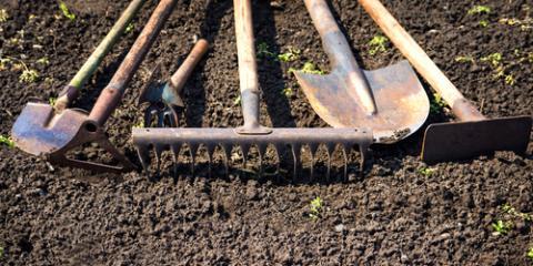 5 Garden Tools Every Beginner Should Have, Arden Hills, Minnesota
