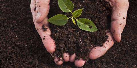 When to Use Topsoil and Garden Soil for Your Home, Stuarts Draft, Virginia