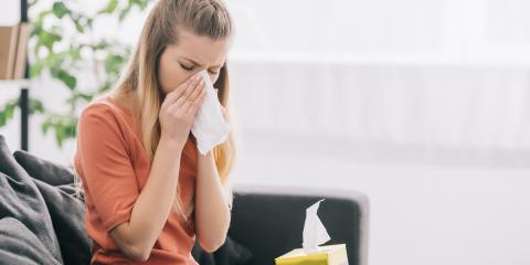 How to Decrease Allergies in the Home, Lexington-Fayette, Kentucky